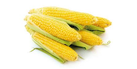 maiz congelado